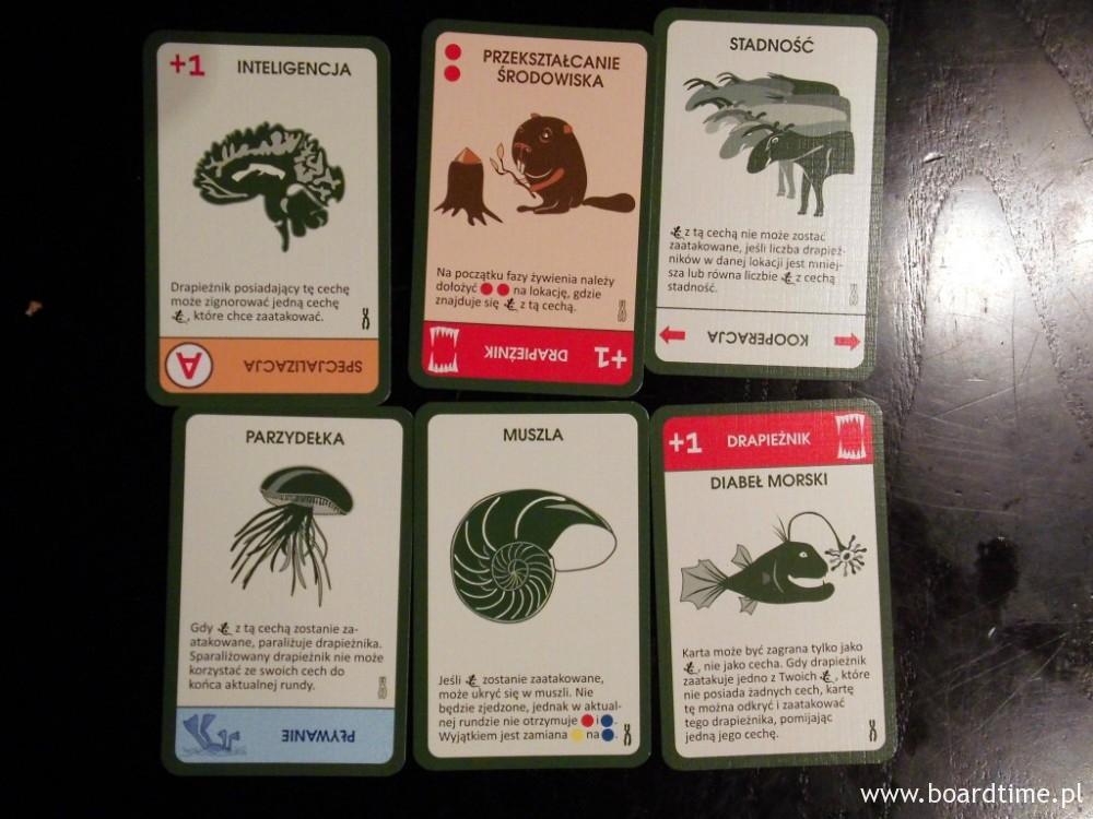 Przykładowe karty z dodatku