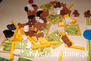 Drewno - mnóstwo drewna